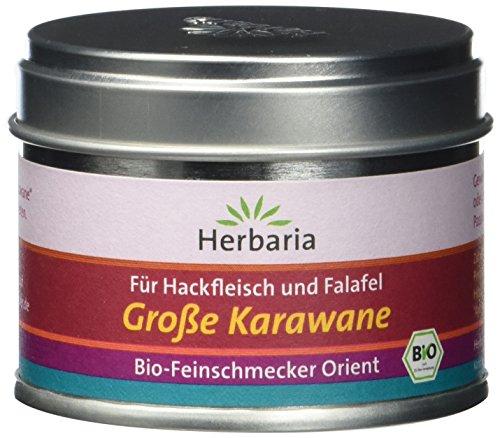 Herbaria 'Grosse Karawane' Mischung für Hackfleisch und Falafel, 1er Pack (1 x 35 g Dose) - Bio