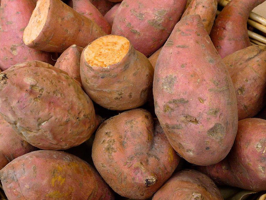 Süßkartoffeln süß & herzhaft
